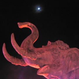 Таиланд: Слоны