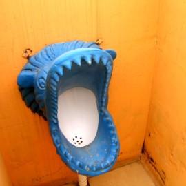 Китай: Чунцин и его туалеты