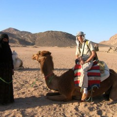 Египет: Бедуины