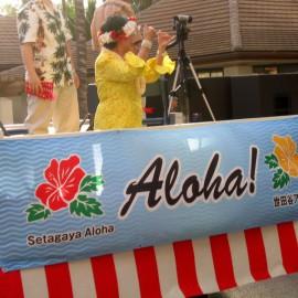 Гавайи: Алоха