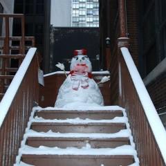 Чикаго: Под снегом