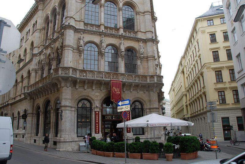 кафе Вены фото