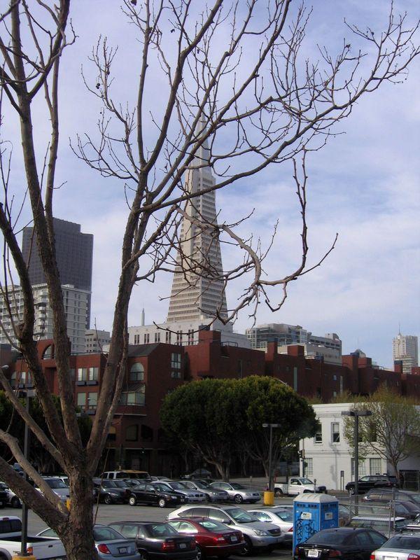 США Сан-Франциско фото