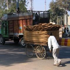 Индия: Движение — жизнь