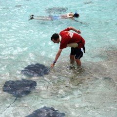 Багамы: Скаты и пираты