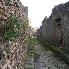 Италия: Помпеи и цветы