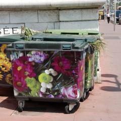 Франция: Цвета Ниццы
