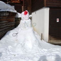Зимние виды спорта в Швейцарии
